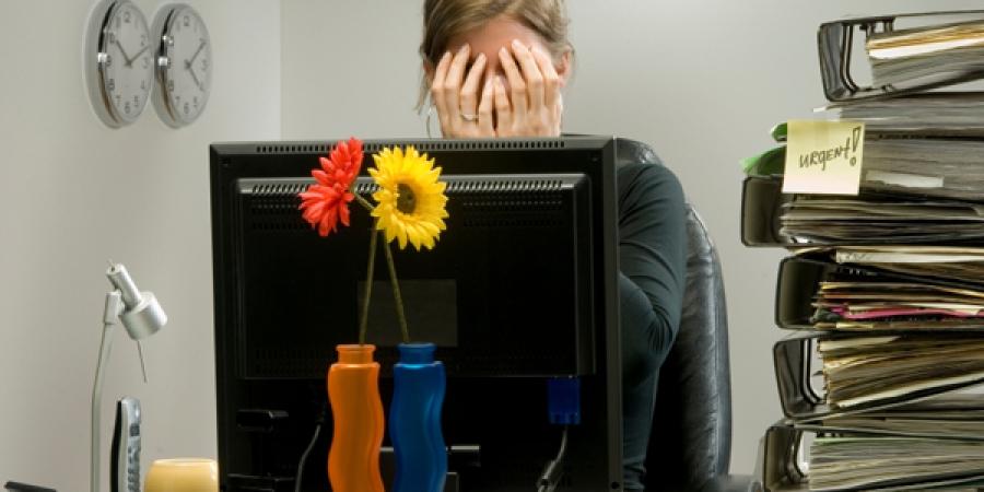 12 پیشنهاد شغلی برای خانم های فعال وموفق