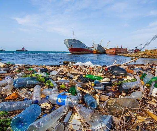 ایده ای برای دریادلان 🌊🌊🌊 زباله های دریا و اقیانوس را جمع کنید ولی امحا نکنید