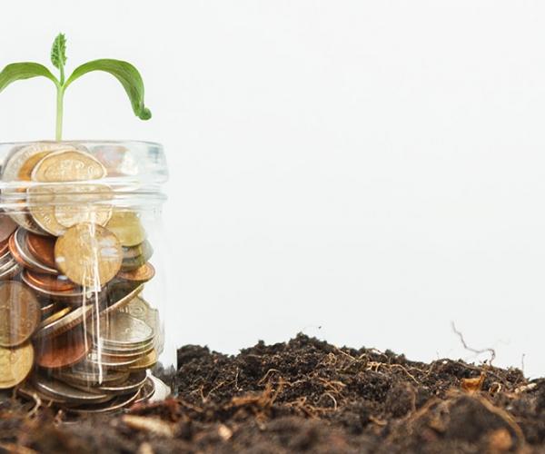 راز ثروتمند شدن با بهترین راهکارهای افزایش هوش مالی در ایران وجهان