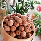 فروش عمده انواع گردو و مغز گردوی آذرشهر در آذراکسپو✔️